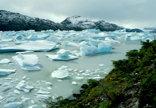 Grey's Iceberg Field